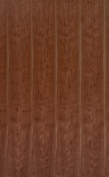 American Black Cherry Flat Cut Crown Grain Wood Veneer - polished - New Delhi, India