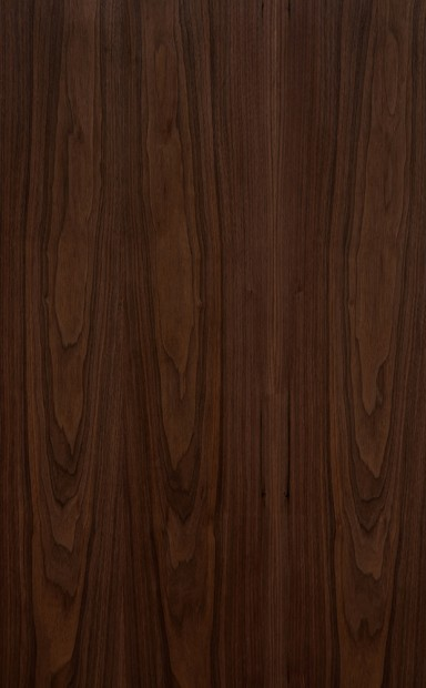 American Black Walnut Flat Cut Crown Grain Wood Veneer - polished - New Delhi, India