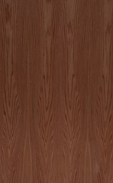 American Red Oak Flat Cut Crown Grain Wood Veneer - polished - New Delhi, India