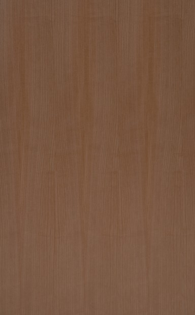 American White Ash Quarter Cut Wood Veneer - polished - New Delhi, India