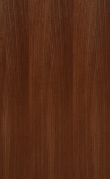 Brazilian Cedar Quarter Cut Wood Veneer - polished - New Delhi, India