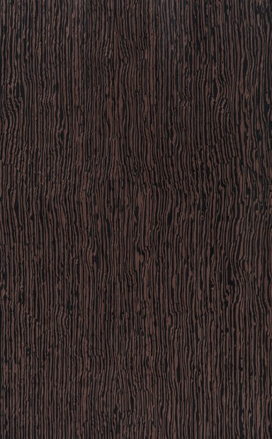 Exotica Wenge Burl Wood Veneer - polished - New Delhi, India