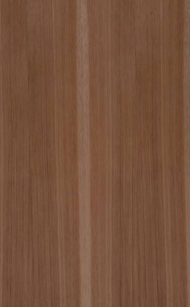 Hickory Quarter Cut Wood Veneer - polished - New Delhi, India