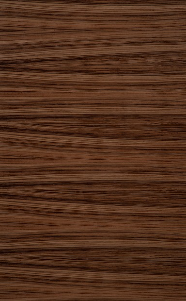 Zingana Horizontal Quarter Cut Wood Veneer - polished - New Delhi, India