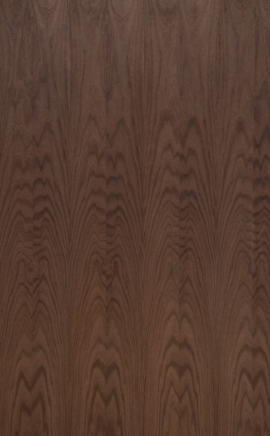 Smoked Golden Elm Flat Cut Wood Veneer - polished - New Delhi, India