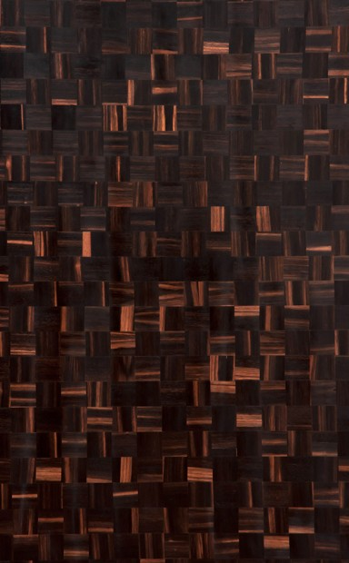 Weaved Ebony Wood Veneer - polished - New Delhi, India